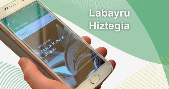 Desarrollo de diccionario online y su aplicación móvil offline para Labayru