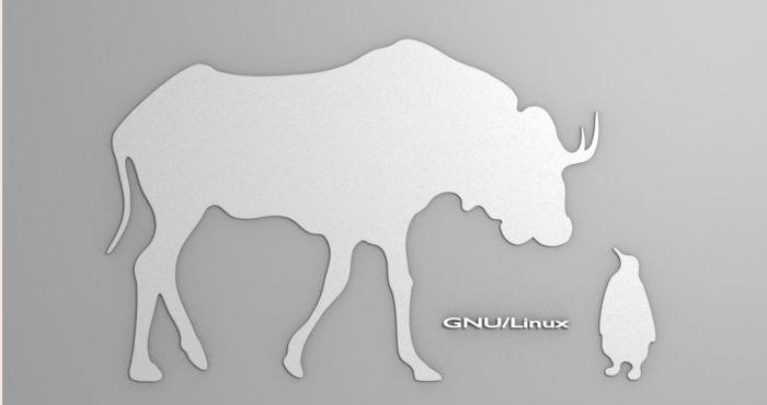 Soporte especialista GNU/Linux